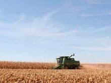 Brasil e Argentina negociam estratégia para exportar soja-media-1
